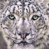 Snow Leopard | Wallhanging by Linda Martin | Artists for Conservation 2021