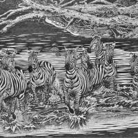 Zebras Crocodile Crossing   Wallhanging by Doug Hiser   Artists for Conservation 2021