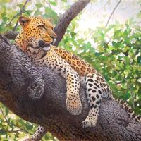 Lounging Leopard   Wallhanging by Randall Bennett   Artists for Conservation 2021