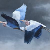 Great Blue Heron Pair   Wallhanging by Guy Coheleach   Artists for Conservation 2021