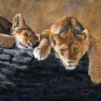 Cat Nap   Wallhanging by Joyce Trygg   Artists for Conservation 2021