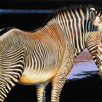 Endangered--Grevy's Zebra | Wallhanging by Cynthie Fisher | Artists for Conservation 2021