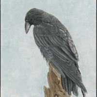 Cihuahuan Raven   Wallhanging by Priscilla Baldwin   Artists for Conservation 2021