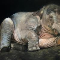 Big Baby | Wallhanging by Denise Monaghan | Artists for Conservation 2021