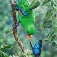 Tropical Encounter  | Wallhanging by Natalie Parker | Artists for Conservation 2021