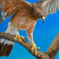Ready for Take-off!   Wallhanging by Patricia Banks   Artists for Conservation 2021