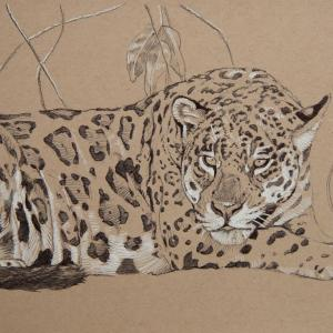 Add Artwork   Wallhanging by Diana Hoehlig   Artists for Conservation