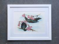 Edit Artwork   Wallhanging by Jane Zimmermann   Artists for Conservation