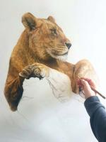 | Wallhanging by Charlotte Williams | Artists for Conservation
