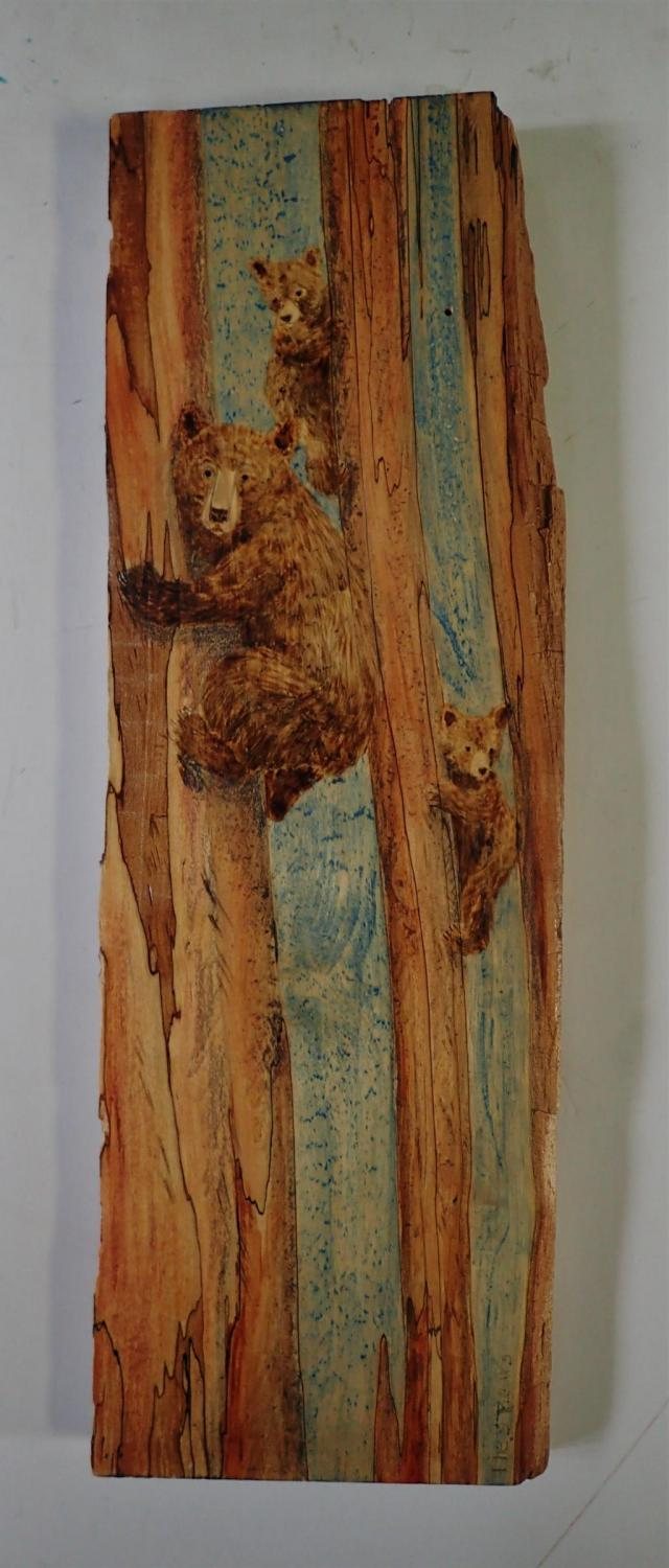 | Wallhanging by Betsy Popp | Artists for Conservation